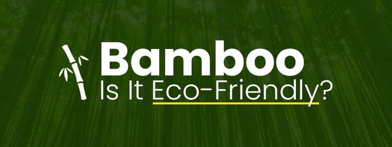 Is Bamboo eco friendly