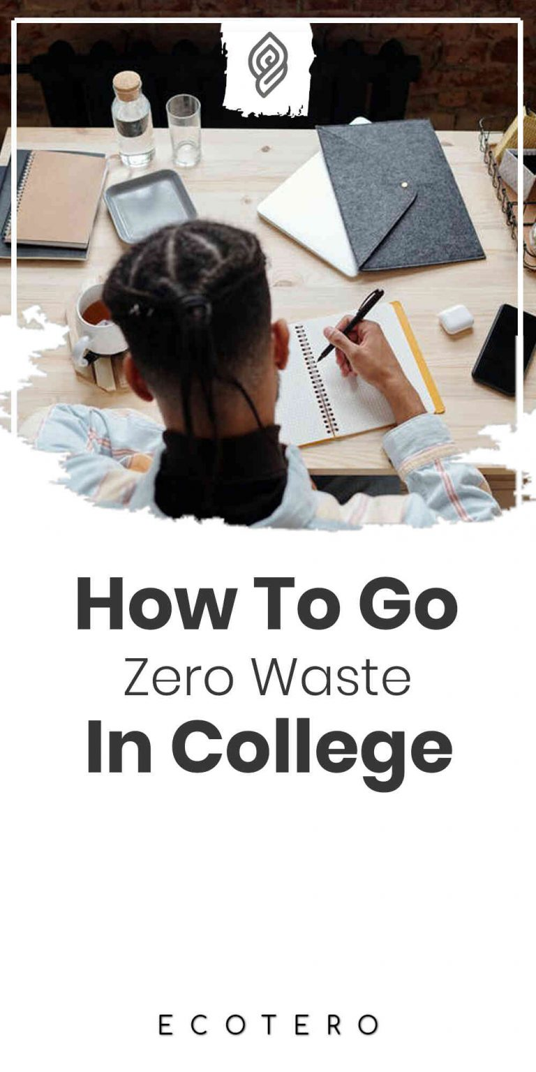 Simplest Zero Waste Tips For College Students