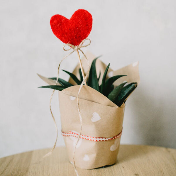 Eco-Friendly Valentines Day Gifts