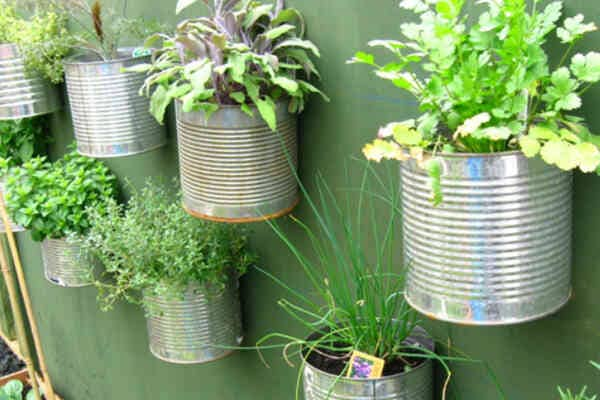 How-To-Start-A-Home-Garden-Without-Lawn