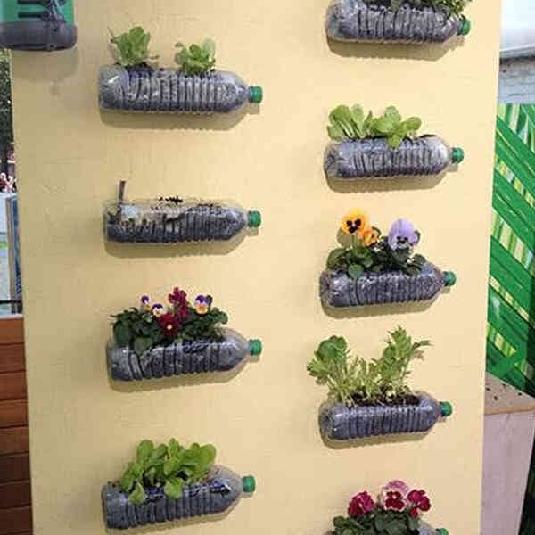 Sustainable-Living-Tip-Home-Garden