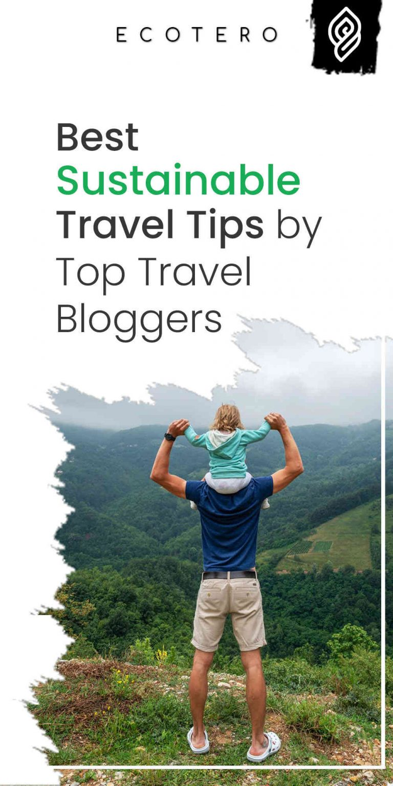 Best Sustainable Travel Tips by Top Eco-Friendly Travel Blogs