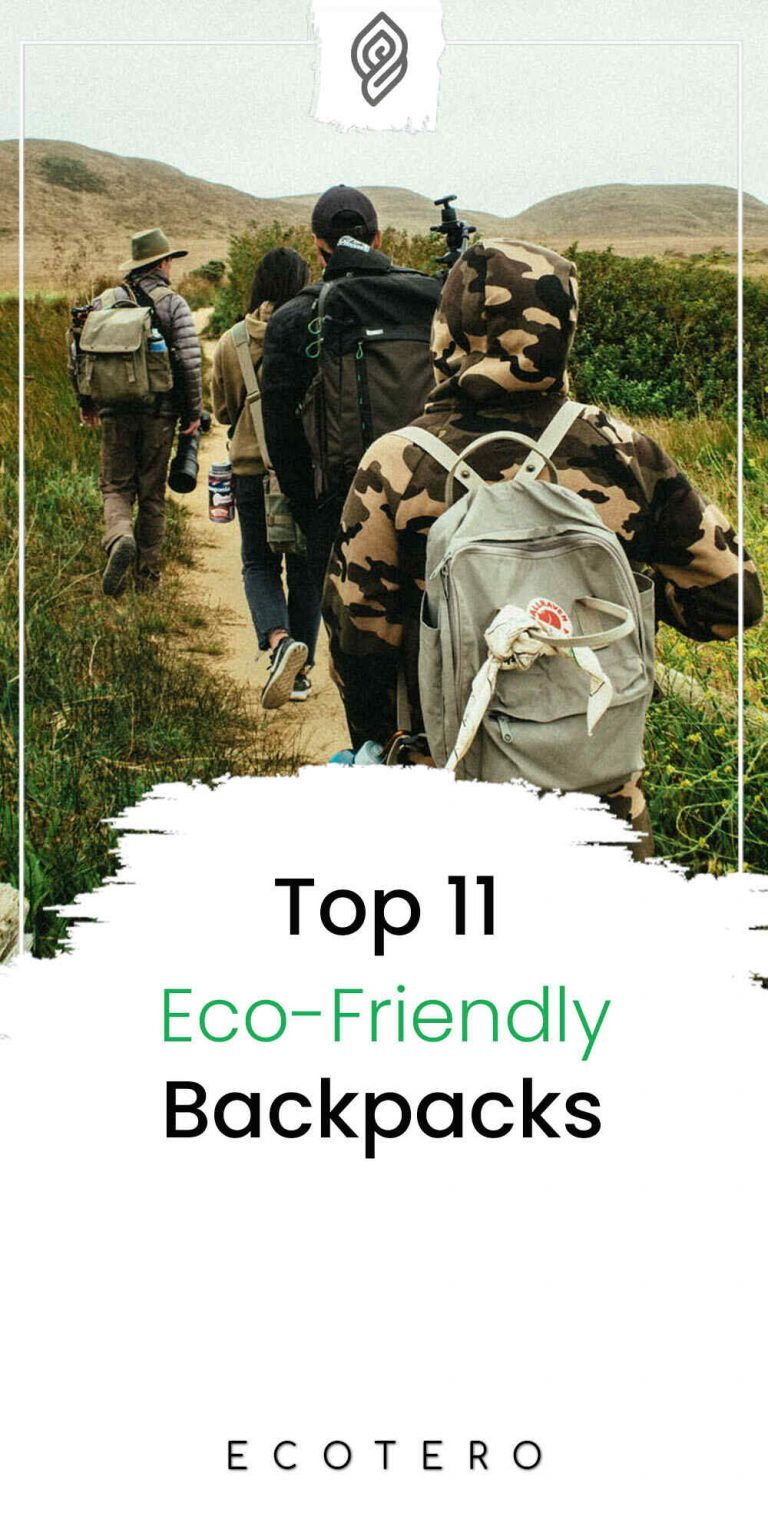Top 11 Best Eco-Friendly Backpacks For Kids And Adults