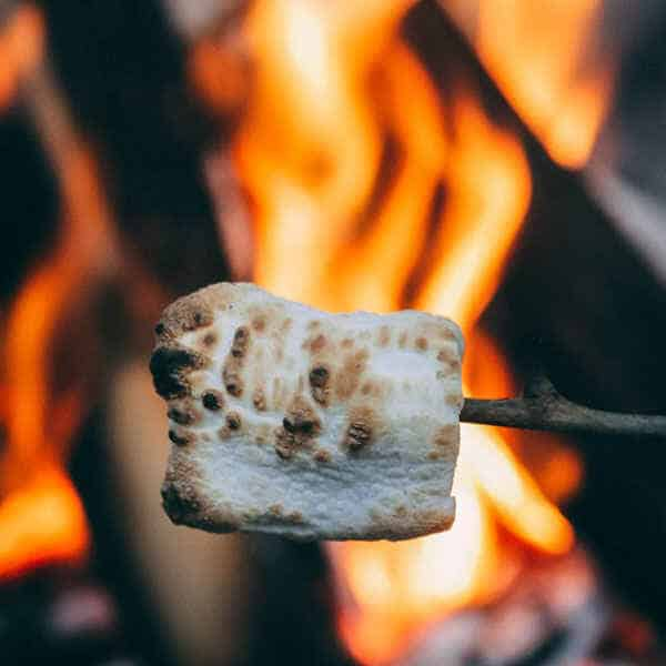 Eco-Friendly-Camping-Foods