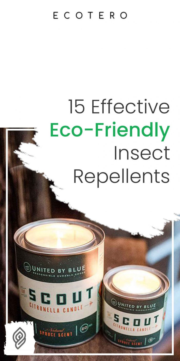 15 Eco-Friendly Insect Repellents That Works!