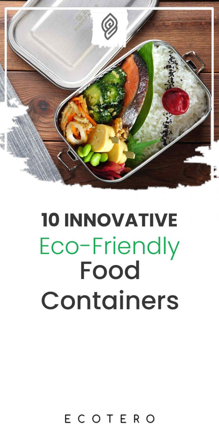 10 Eco-Friendly Food Containers For Sustainable Food Storage